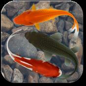 Beautiful Fish Screensaver