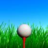 My Golf Caddy