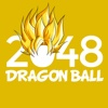 2048 Dragon Ball Version