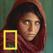 내셔널 지오그래픽의 가장 위대한 사진들 50선