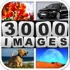 Errate 3000 Bilder