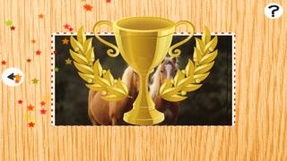 Animée de Puzzle Avec des Poneys et Chevaux Haflinger - Jeu Gratuit Du Plaisir Pour des enfants, Filles, Garçons et Toute la FamilleCapture d'écran de 2