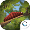 Caterpillar: TopIQ Story Book For Children in Preschool to Kindergarten HD