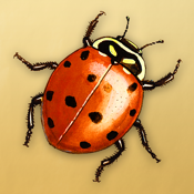 Animal Name Game icon