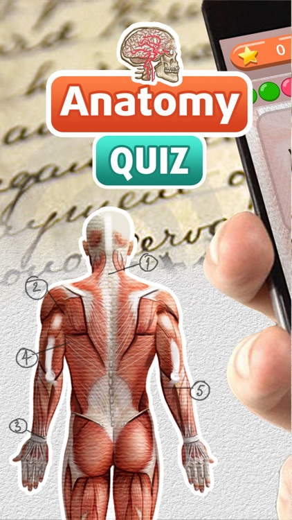 Anatomy Free Trivia Quiz – Download Best Science Game and Learn ...
