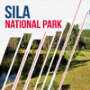 ALEATTI SIRISHA - Sila National Park Travel Guide  artwork