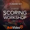 Advanced Scoring For Cubase