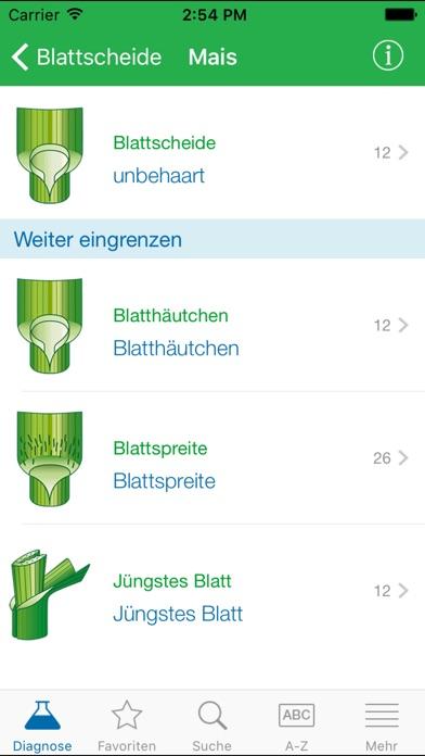 Screenshot von Ungräser4