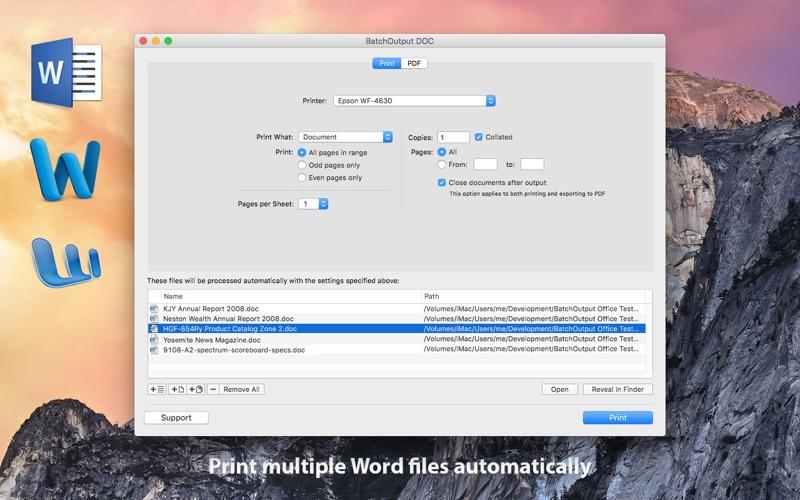 2_BatchOutput_DOC_for_Word.jpg