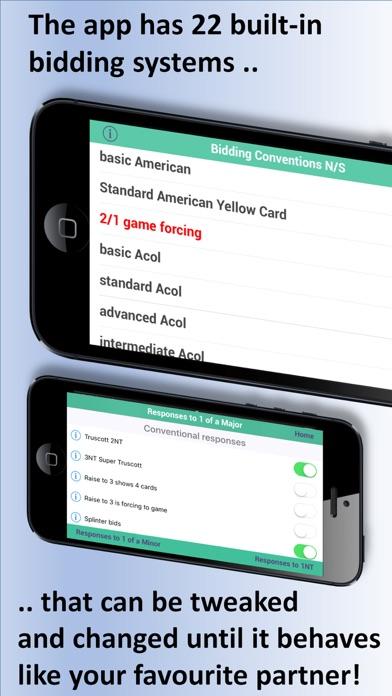 Ibridgeplus review screenshots