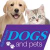 Australian Dogs & Pets