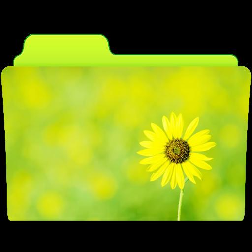 Custom Folder Icon