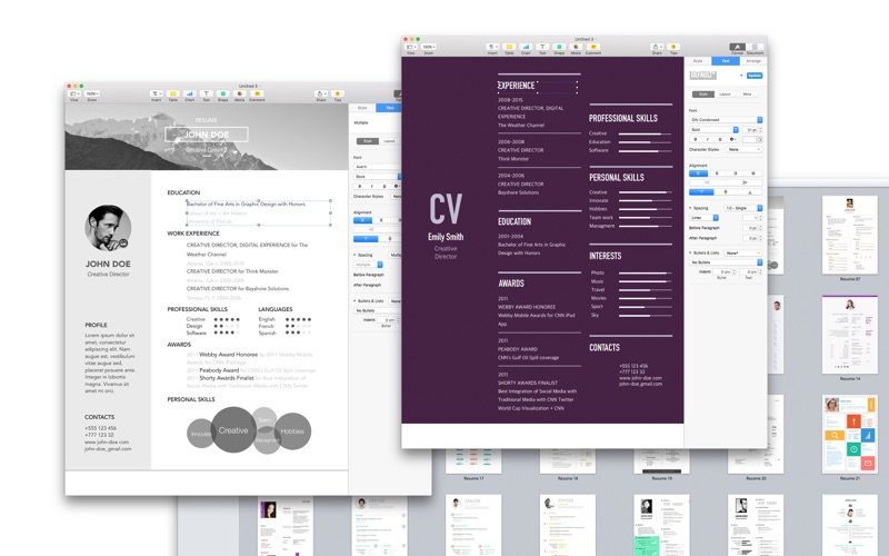 Resume Templates For Pages  Resume Templates And Resume Builder