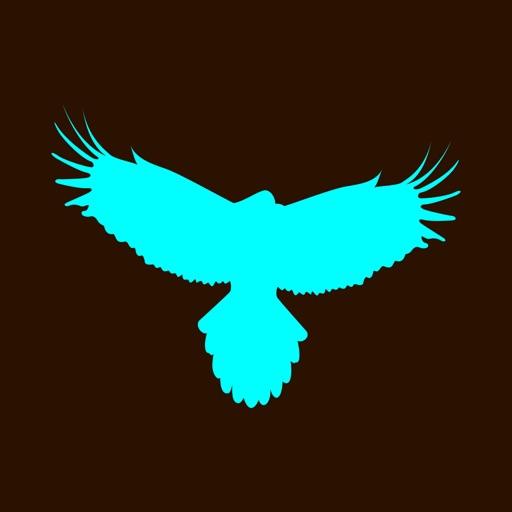 Flappy Flying Falcon iOS App