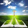 Die Elberfelder Bibel