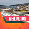 ALEATTI SIRISHA - Wellington Travel Guide  artwork