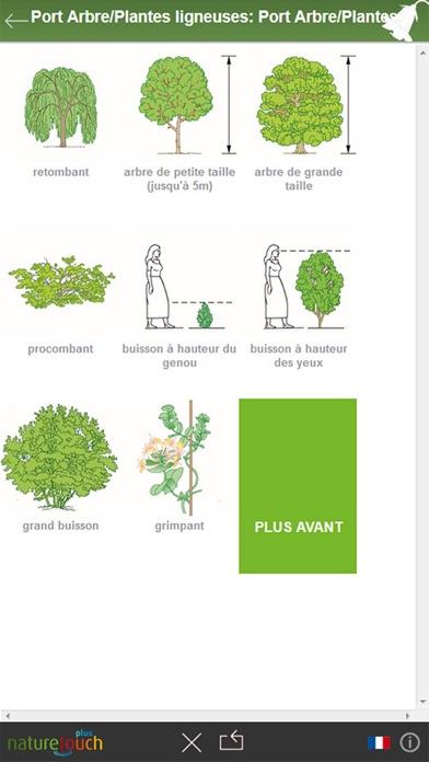 identification des 3000 plantes naturetouch dans l app store. Black Bedroom Furniture Sets. Home Design Ideas