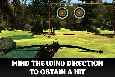 Crossbow Shooting Championship 3D screenshot 2