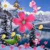Fight for Flowers(2)(DiZi & Snow Mountain)