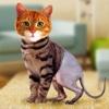 Simulator Morph Cat
