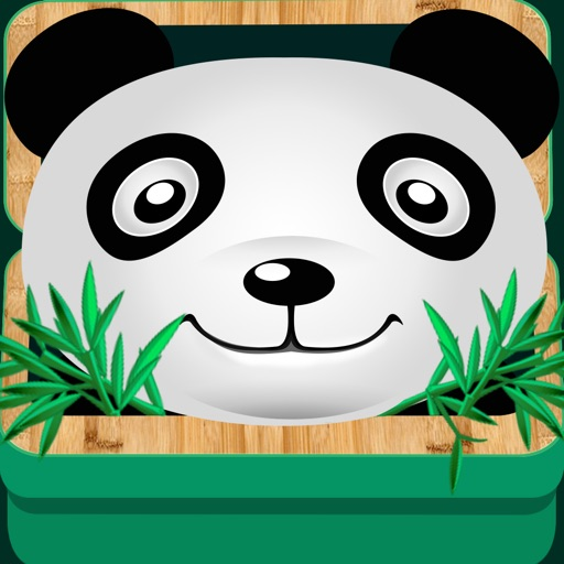 Panda Steal Bamboo iOS App