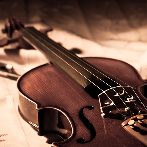 learn to play violin pdf