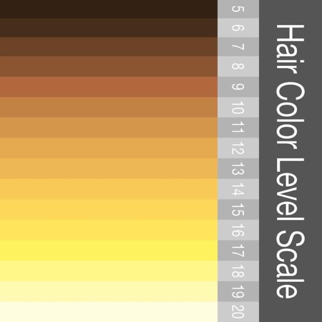 28 Hair Color Scale The 25 Sportprojections Com