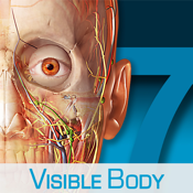 Human Anatomy Atlas – 3D Anatomical Model of the Human Body