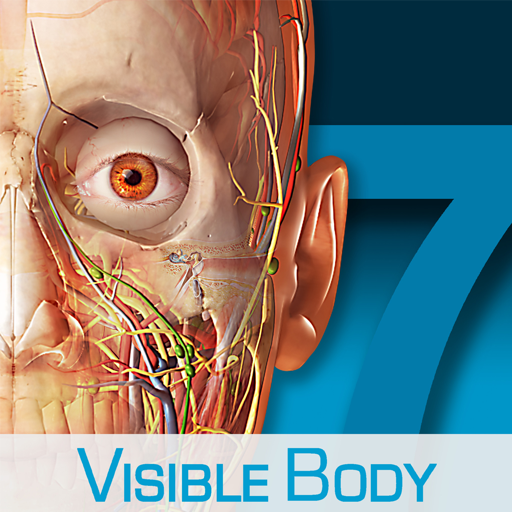 Human Anatomy Atlas – 3D Anatomical Model of the Human Body Mac OS X