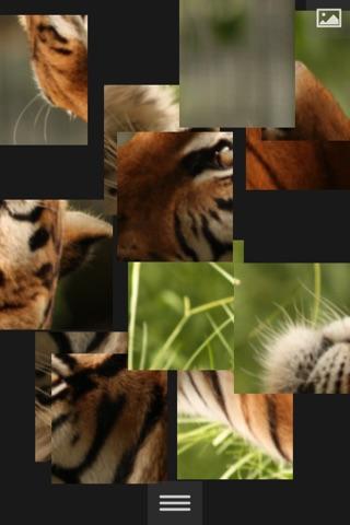 Puzzlemania - Make your photos puzzles screenshot 2