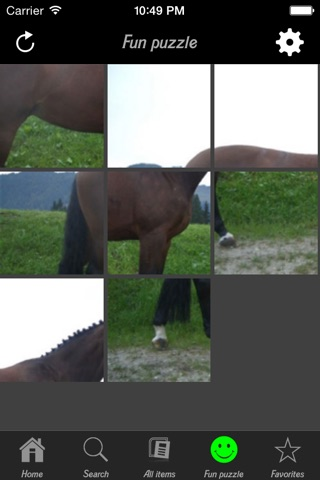 Horse Breeds Collection screenshot 3