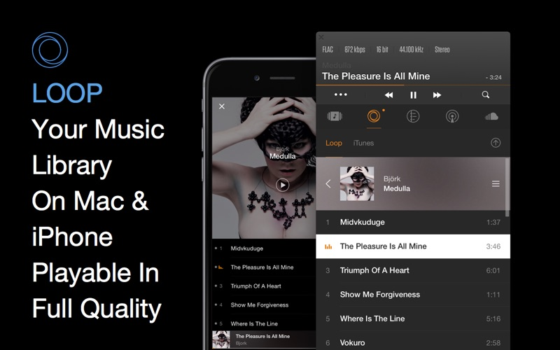 Screenshot #3 for VOX: Music Player & SoundCloud Streamer