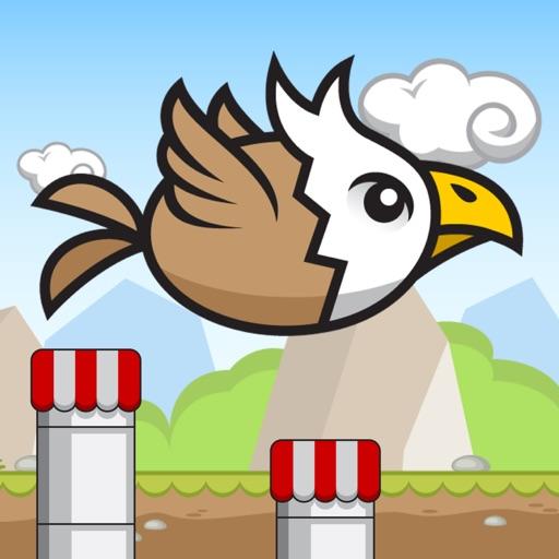 Birdio iOS App