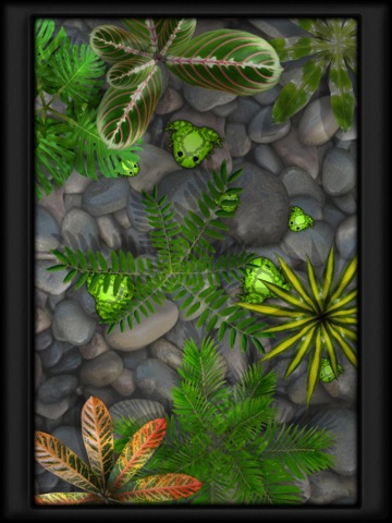 Screenshots of Pocket Frogs - Free pet farming for iPad