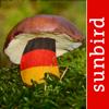 Pilzführer Deutschland - Pilze Sammeln, Bestimmen und Zubereiten, der Profi Pilzführer für Wald und Garten - Mullen & Pohland GbR