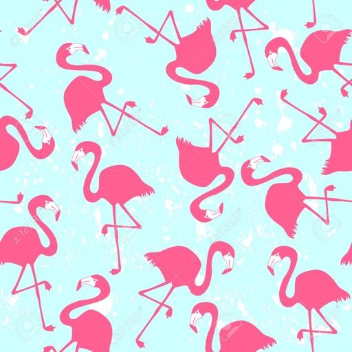火烈鸟图案高清壁纸收藏图库:个性名言主题背景