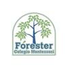 Forester Colegio Montessori