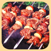 Kebab Grill, Barbecue. Download recipes from meat, chicken and fish for grilling, aerogrill, braziers and Multicookings