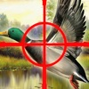A Cool Adventure Hunter The Duck Shoot-ing Game by Animal-s Hunt-ing & Fish-ing Games For Adult-s Teen-s & Boy-s Free