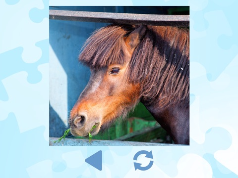 Horse Puzzles for girls: jigsaw puzzle fun with many different horses screenshot 2