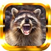 Raccoon Hunter Gold Pro