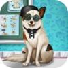 Chiens fracture urgence - Veterinary Pet (thérapie de chien )