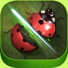 Amazing Bug Slicer Ninja: Bonsai War Heroes