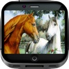 Horse Art Gallery HD – Artwork Wallpapers ,  Themes and Album Backgrounds
