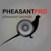 REAL Pheasant Calls &...