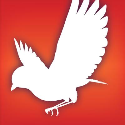 Audubon Birds app review
