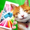 Ultrasound whistle - cat and dog training. Pet stunner