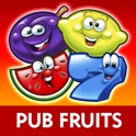 Reflex Fruit Machine Collection: Play Real Pub Fruit Machines For Free! icon