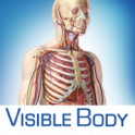 Anatomy & Physiology Body Structures Function icon