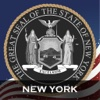 NY Court Acts (New York Laws, Titles & Codes)